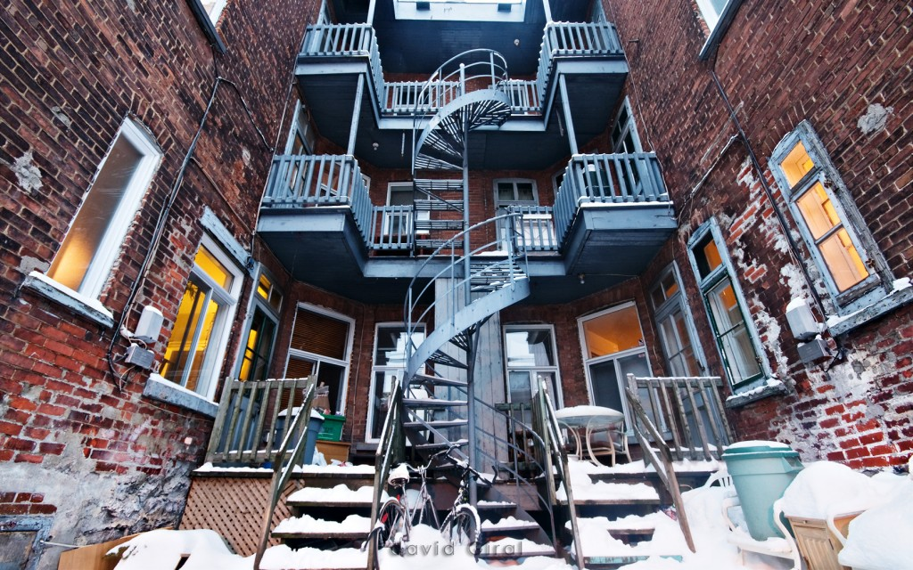 Photograph of a snowy backyard taken on the plateau mont-royal neighborhood on christmas eve
