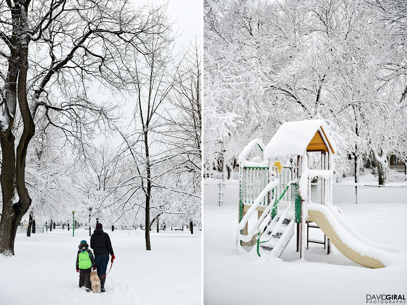 Family walking their dog in a snow covered park of Outremont in Montreal