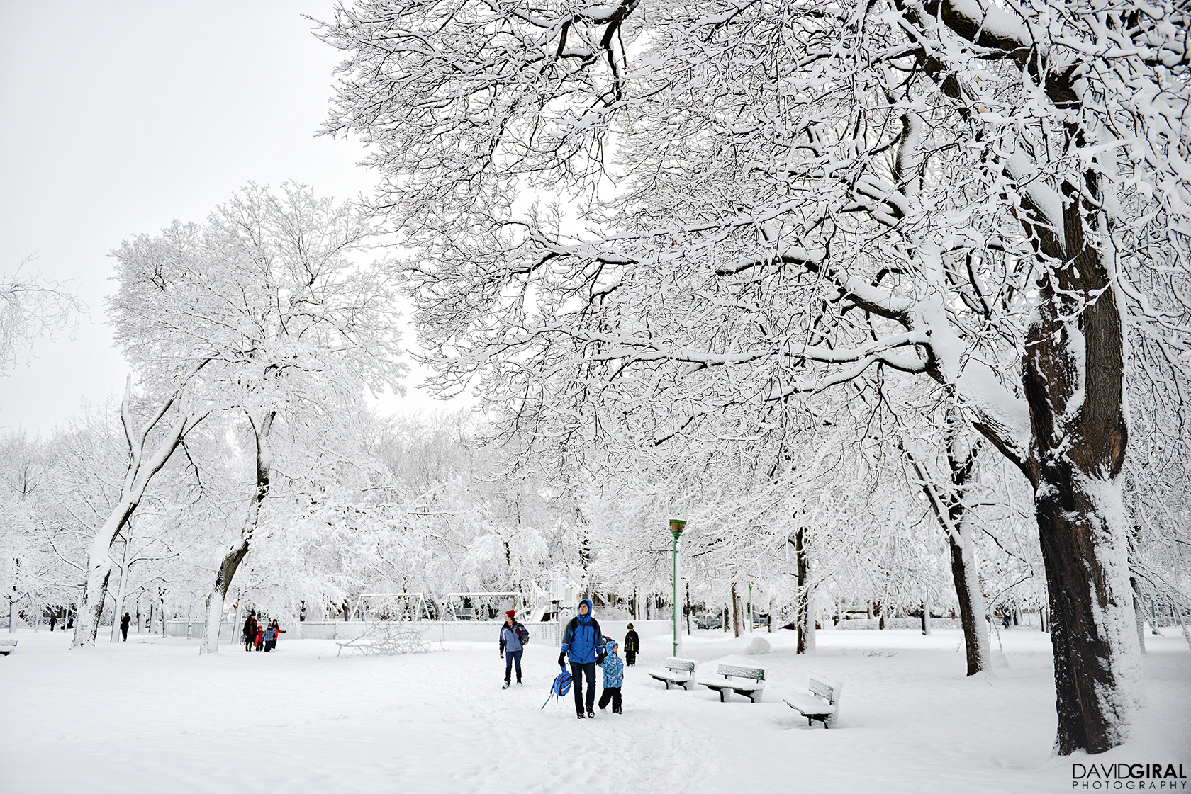 Kids and adults walking in a snow covered park of Outremont in Montreal