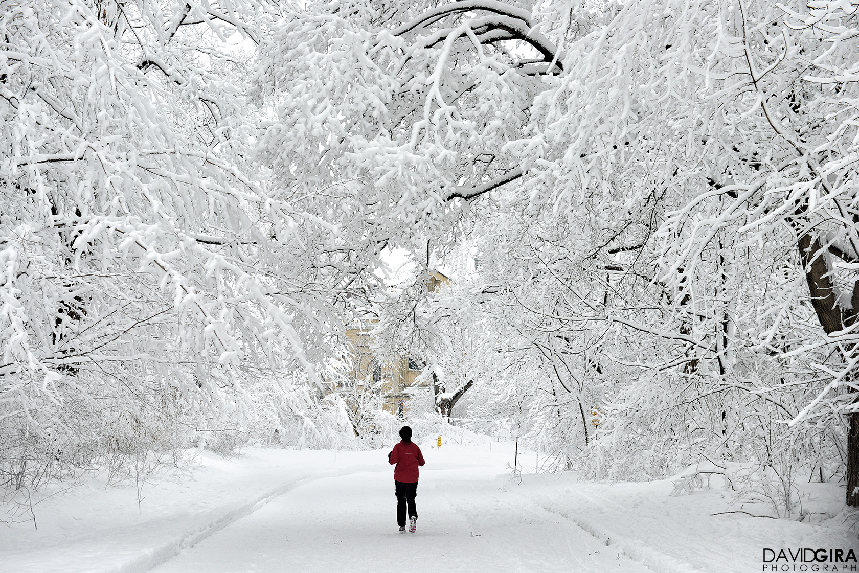 Woman running  in Mont Royal Park in Montreal during winter