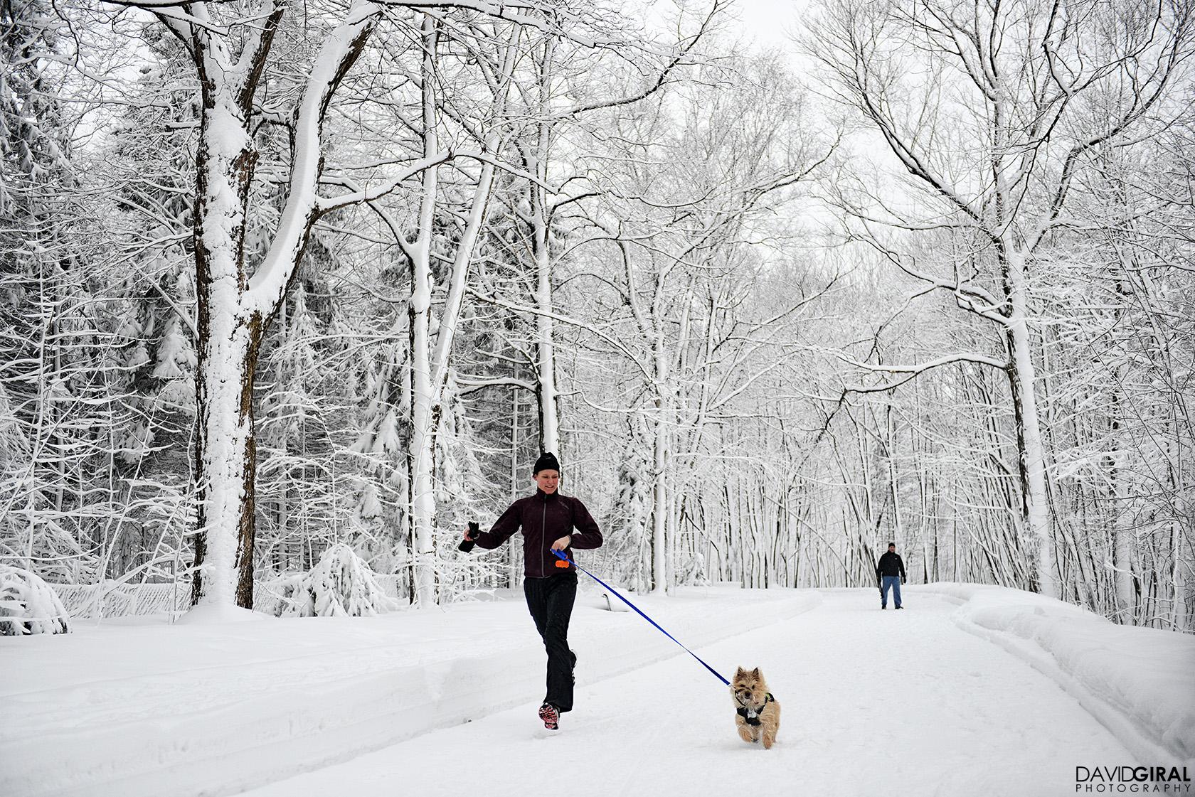 Woman running with her dog in Mont Royal Park in Montreal during winter
