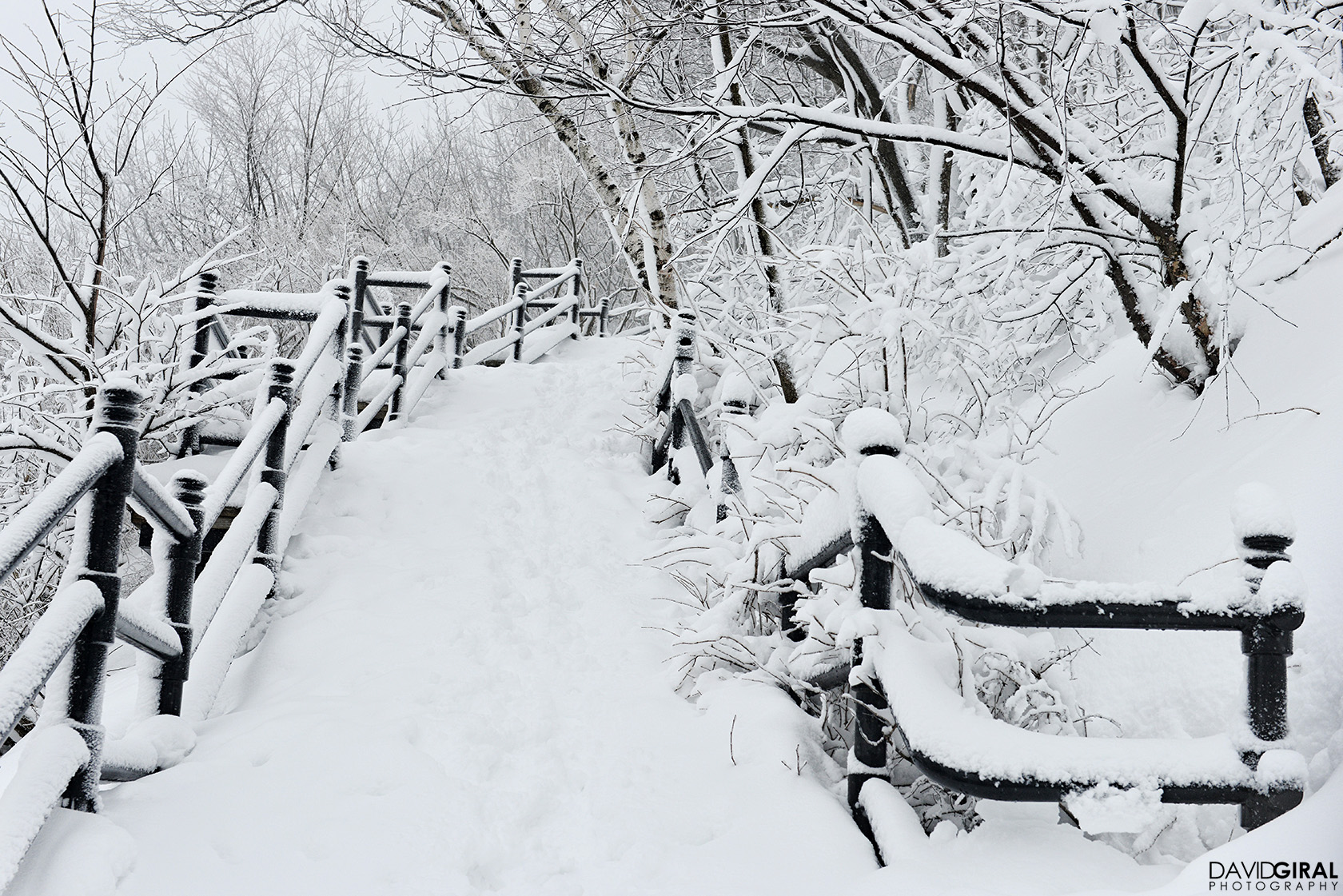 Snow covered stairs of Mont Royal Park in Montreal