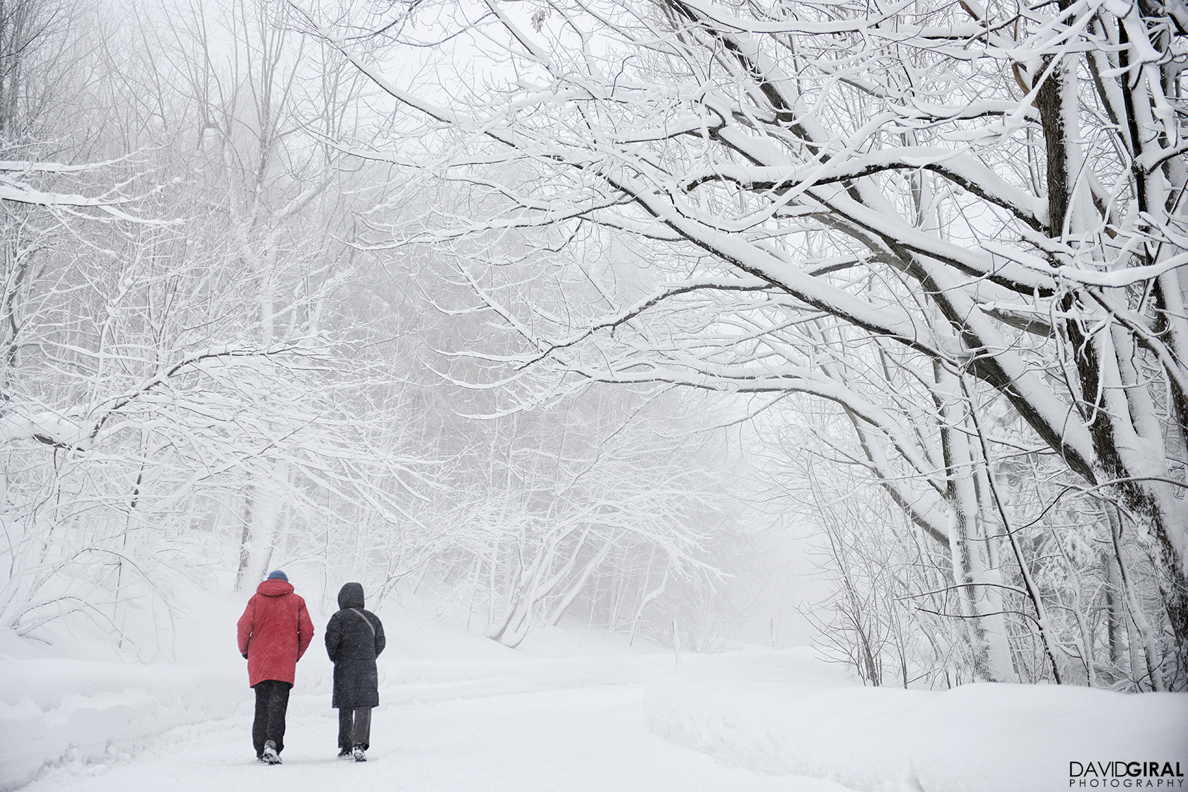Couple walking in a snowy mist at Mont Royal Park In Montreal