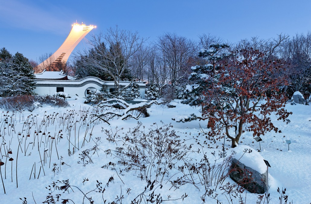Exploring Montreal: Snowy Christmas Eve at The Montreal Botanical Garden