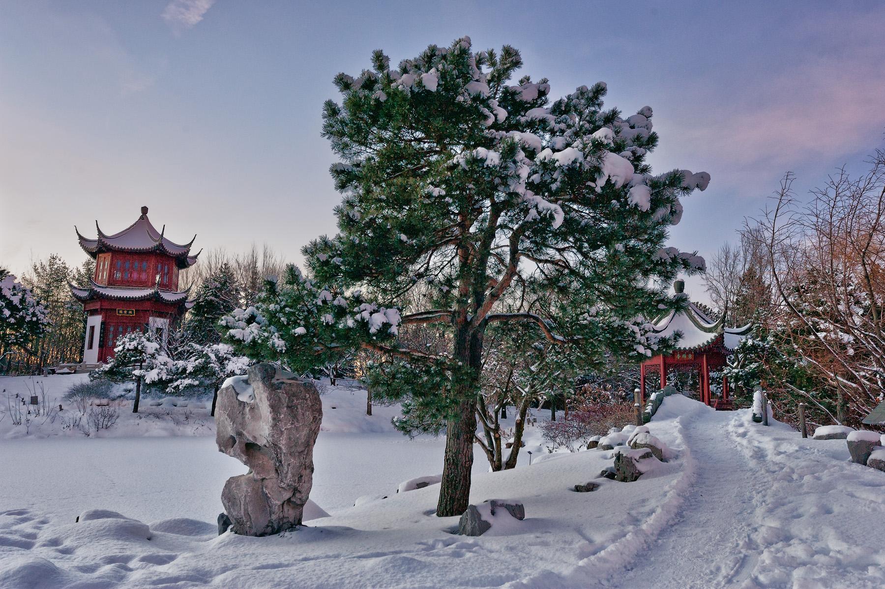 editorial-travel-montreal-botanical-garden-snow-winter-dusk-011